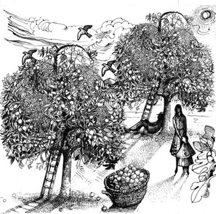 Standen Fruit Farm Community Orchard Association